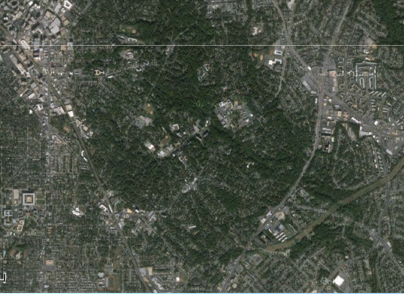 Tree-friendly Takoma Park, MD from the sky. From google maps.